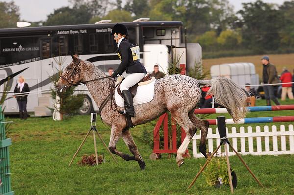 266_horse trials