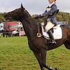 024_horse trials