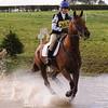 159_horse trials