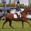 054_horse trials