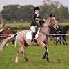 238_horse trials