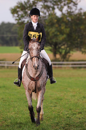 226_horse trials
