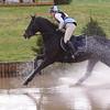 176_horse trials