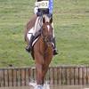 334_horse trials