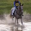 303_horse trials