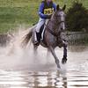 305_horse trials