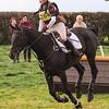 193_horse trials