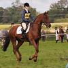 050_horse trials