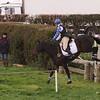 091_horse trials