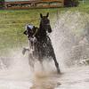208_horse trials