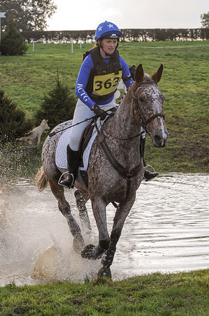 309_horse trials