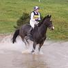 077_horse trials