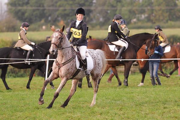 235_horse trials