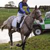 311_horse trials