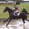 196_horse trials
