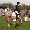 243_horse trials