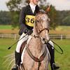 230_horse trials