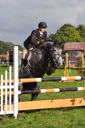 037_horse trials