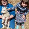 001_Lambing Sunday