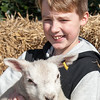 066_Lambing Sunday