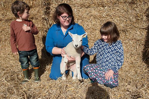 002_Lambing Sunday