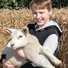 062_Lambing Sunday