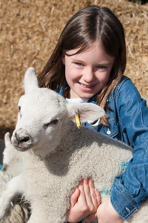 011_Lambing Sunday