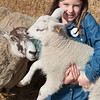 014_Lambing Sunday
