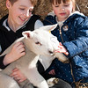 069_Lambing Sunday
