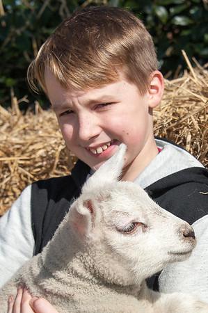 067_Lambing Sunday