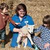 003_Lambing Sunday