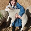 013_Lambing Sunday