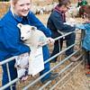 259_Lambing Sunday