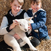 073_Lambing Sunday