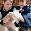 070_Lambing Sunday