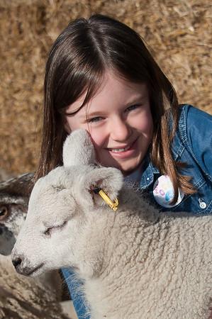 016_Lambing Sunday