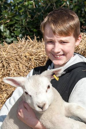 064_Lambing Sunday