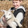 061_Lambing Sunday