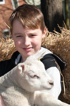 060_Lambing Sunday