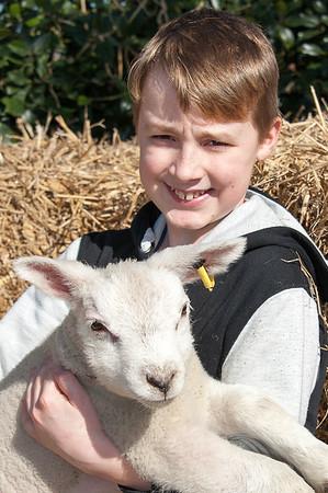 065_Lambing Sunday