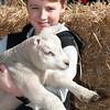 058_Lambing Sunday