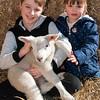 071_Lambing Sunday