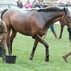 127_ABC Point to Point
