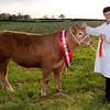 ABC Beef winner