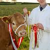 ABC Beef winner 2