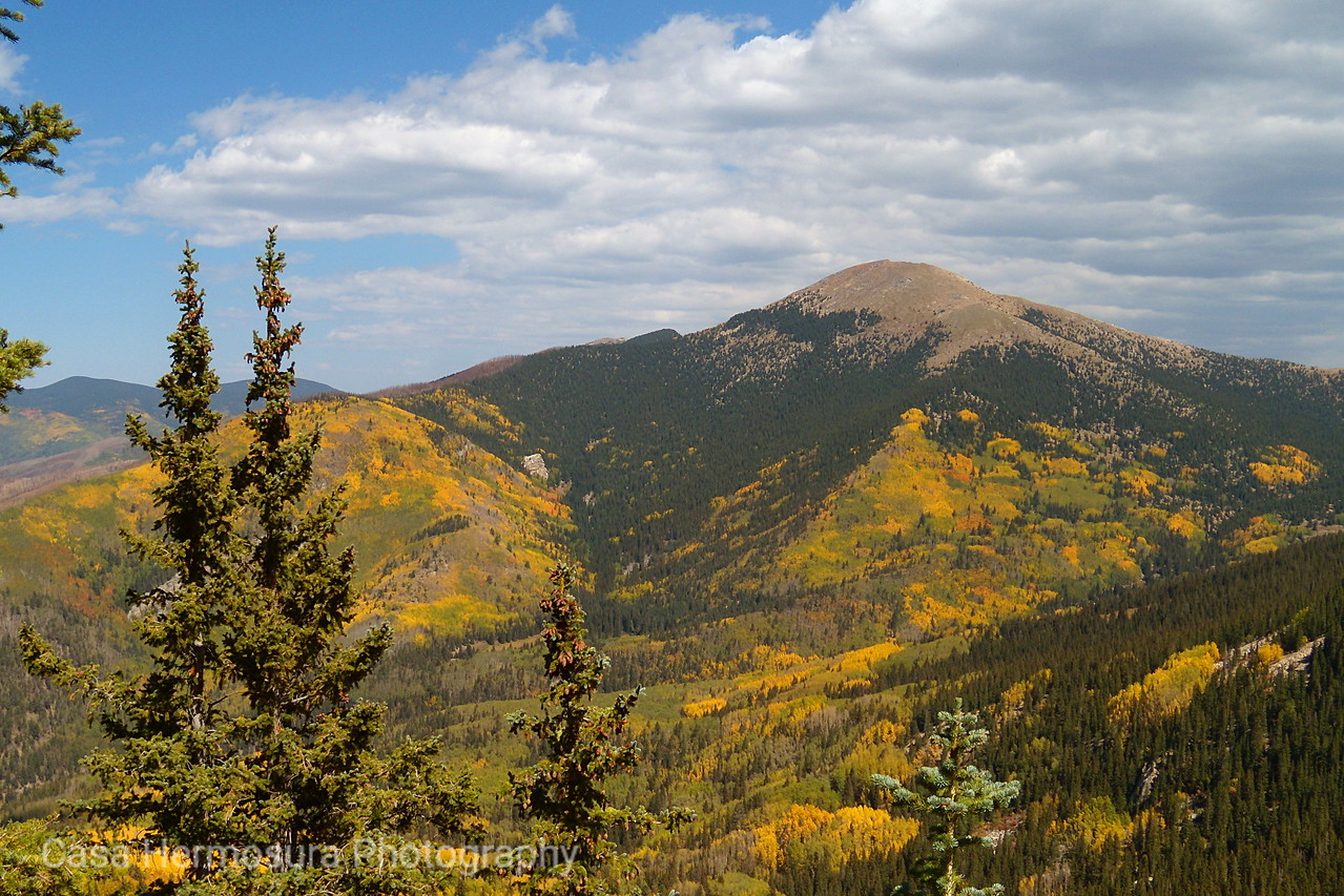 Fall Color in the Mountains