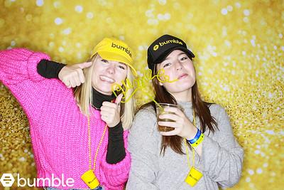 Bumble in Telluride 2020-01