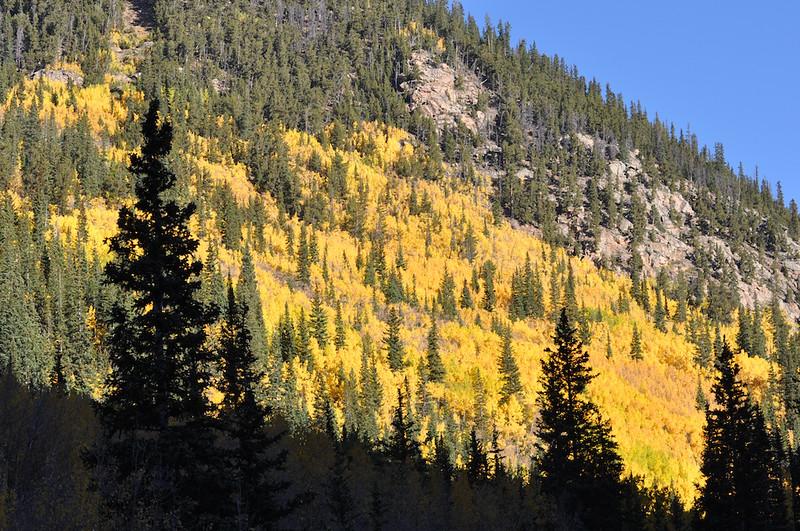 Guanella Pass, near Georgetown, CO.