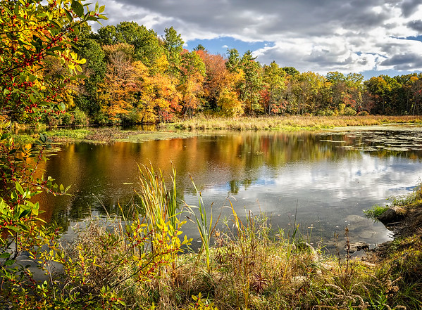 Assabet River Stow MA in Fall