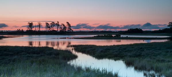 Pre-dawn, Black Duck Pond, Chincoteague NWR